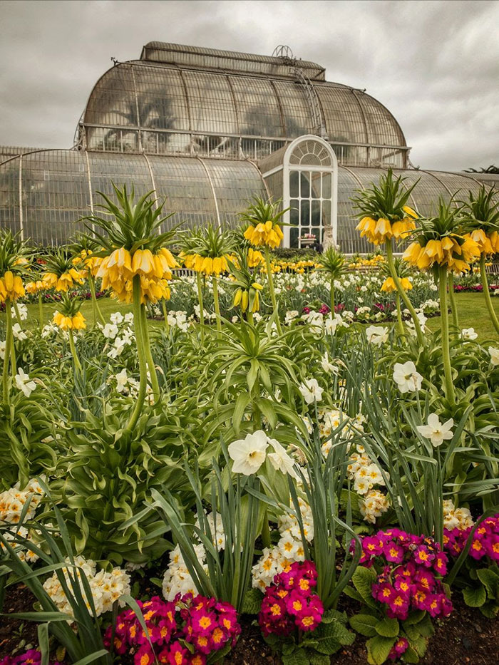 Kew Garden Greenhouse