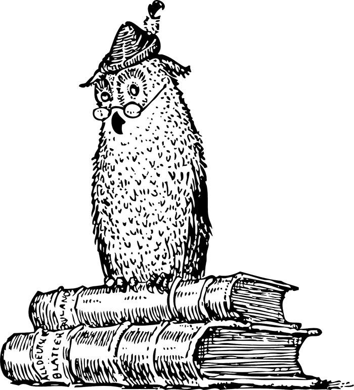 An Owl on Books