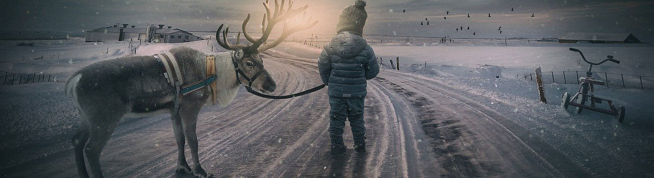 Reindeer and Child