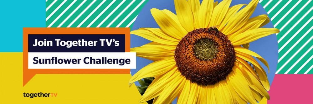 Sunflower Challenge