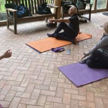 Yoga at Phoenix Gardens